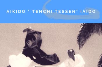 Estágio de Verão TenChi (Aikido/TenChi Tessen/ Iaido)